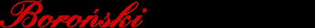 Boroński Ślusarstwo - usługi ślusarskie